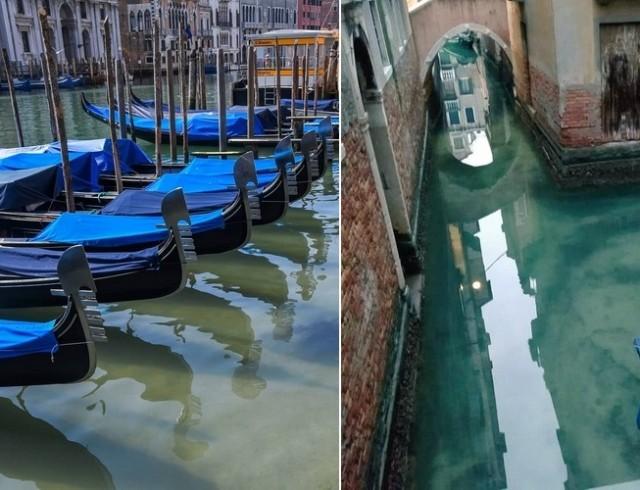 Венеция без туристов переродилась: кристально чистое дно, рыбки и свежий воздух